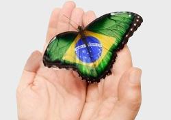 Racismo e Preconceito Tiram o Brasil do Rumo do Sucesso - AntonioBorba.com