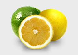 Lemon, Lime e Key Lime - AntonioBorba.com