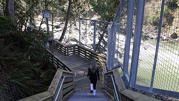 Passarela de madeira que leva ao pé das quedas de Snoqualmie